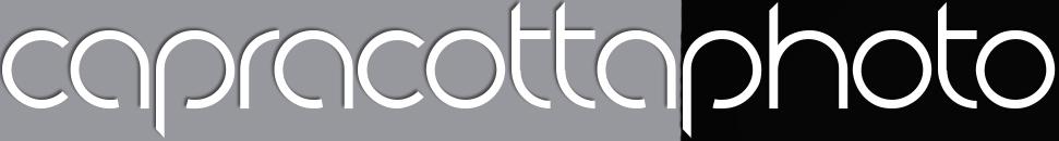 fms-partner